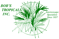Bobs Tropicals Logo