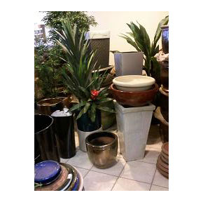 Bob's Tropicals Inc., ships decorative containers Nationwide!