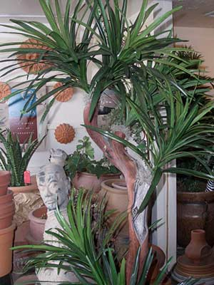 Showroom Bobs Tropicals Inc - replica plants